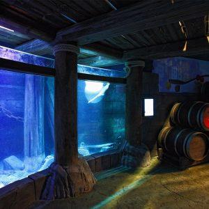 07-Sealife-Aquarium-Lido-Jesolo