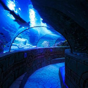 08-oceanic-tunnel-Sealife-Jesolo-Lido