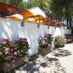 09-Nursery-Camping-Mediterraneo